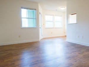Willow Pond Apartment living room